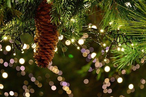 Jahresendveranstaltung Weihnachtszauber in Herzverbundenheit am Montag