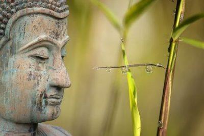 Meditation – Gelassen wie ein Buddha Outdoor im Ewilpa®️Mönchengladbach
